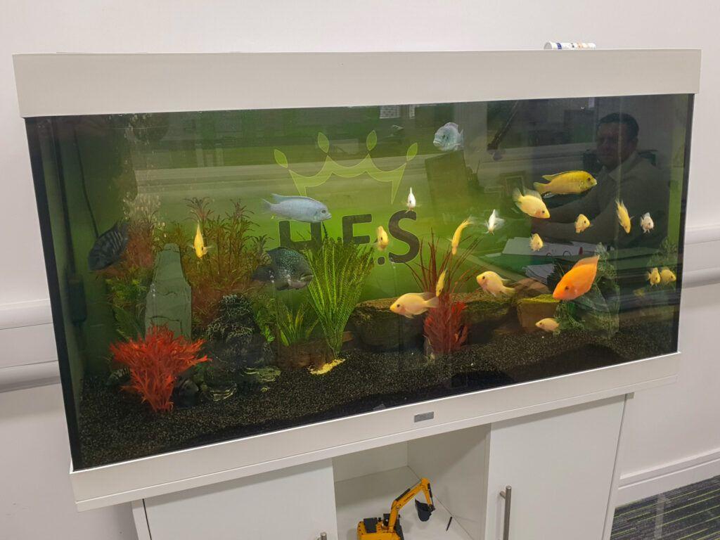 HES Aquarium graphic