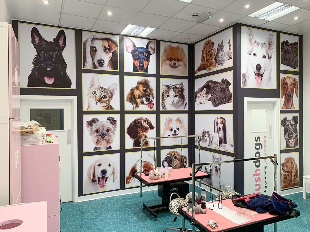 Wall art at Lush Dogs, Whiteley